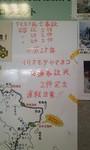 P2013_0608_114158.JPG